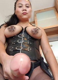 Mistress Alice Online Training - dominatrix in Beijing Photo 1 of 1
