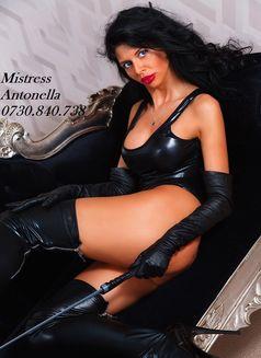 Mistress_Antonella - dominatrix in Bucharest Photo 10 of 16