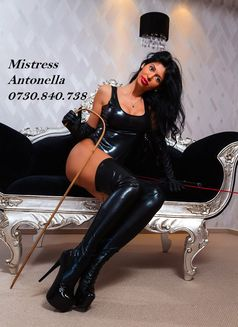 Mistress_Antonella - dominatrix in Bucharest Photo 12 of 16