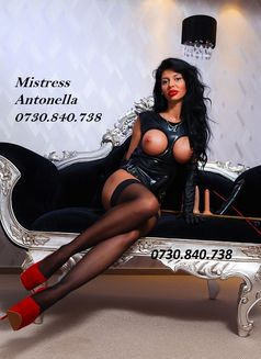 Mistress_Antonella - dominatrix in Bucharest Photo 16 of 16