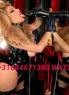 NEW MISTRESS STRAPOM ANAL SEX CALL NOW - dominatrix in Rotterdam Photo 4 of 17