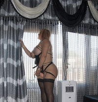 NEW MISTRESS STRAPOM ANAL SEX CALL NOW - dominatrix in Beirut Photo 14 of 17