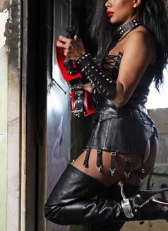 Mistress Geneva - dominatrix in Geneva Photo 1 of 30