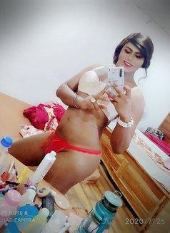 Mistress Leona - Genuine Gentlemens Only - Transsexual escort in Colombo Photo 28 of 29