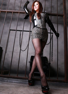 Mistress Tsubaki - dominatrix in Osaka Photo 6 of 9