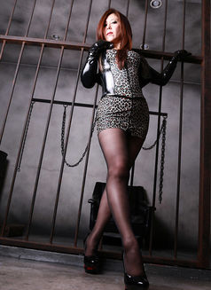 Mistress Tsubaki - dominatrix in Osaka Photo 9 of 9