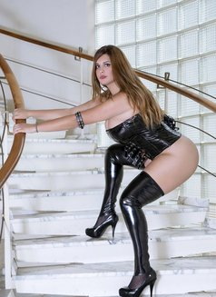 Mistresse French - dominatrix in Lille Photo 5 of 8