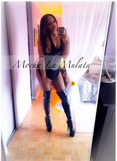 Mocha La Mulata - escort in Moncton, New Brunswick Photo 8 of 18