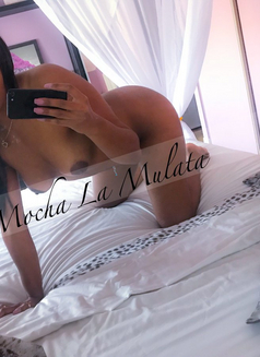 Mocha La Mulata - escort in Niagara Falls Photo 3 of 18