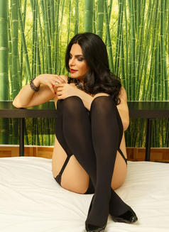 Monique Mon Incall/Outcall 24H - Transsexual escort in Hasselt Photo 1 of 30