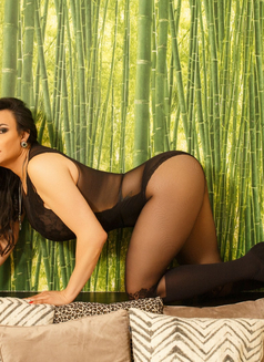 Monique Mon Incall/Outcall 24H - Transsexual escort in Hasselt Photo 2 of 30
