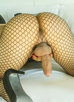 Monique Mon Incall/Outcall 24H - Transsexual escort in Hasselt Photo 18 of 30