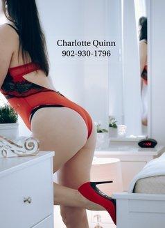 Ms Charlotte Quinn - escort in Halifax Photo 6 of 6