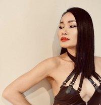 Naughty Bitch.I LOVE to hear you Scream - Transsexual escort in Bangkok