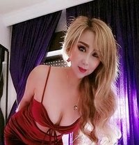 New Anal Sex Woman - escort in Amman Photo 1 of 6