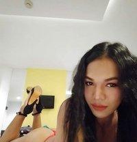New and Sexy Ladyboy Sonya - Transsexual escort in Dubai