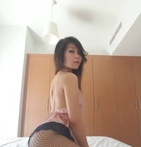 New Thai Girl Cherry - escort in Dubai Photo 1 of 4