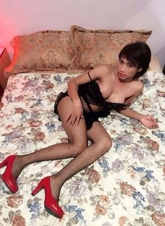 New escort - Transsexual escort in Singapore Photo 1 of 5