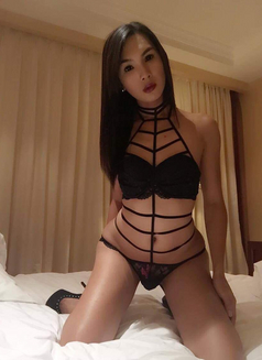 YOUNG PornStar TS AICO just landed - Transsexual escort in Angeles City Photo 7 of 27