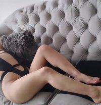Nicole Ardiente Culo Firme Oral Profundo - escort in Barranquilla