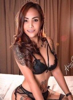 Phuket Platinum Escorts - escort agency in Phuket Photo 15 of 18
