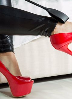 Professional Mistress Ann in town - dominatrix in Dubai Photo 16 of 30