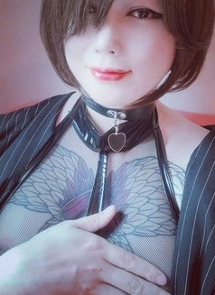 Pussycat Ray - Transsexual escort in Seoul Photo 26 of 30