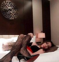 Ts Qirana - Transsexual escort in Jakarta