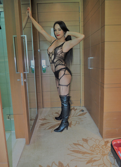 8Inches TOP and BOTTOM for you - Transsexual escort in Bangkok Photo 13 of 26