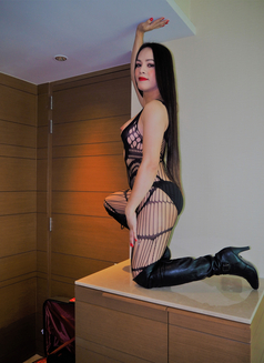 8Inches TOP and BOTTOM for you - Transsexual escort in Bangkok Photo 14 of 26