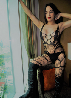 8Inches TOP and BOTTOM for you - Transsexual escort in Bangkok Photo 16 of 26