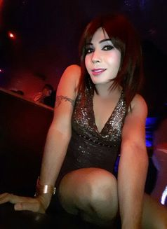Raghvi - Transsexual escort in New Delhi Photo 1 of 17