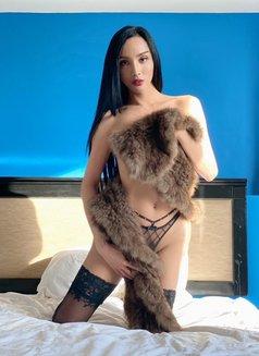 Reina - Transsexual escort in Tokyo Photo 1 of 16