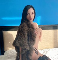 Reina - Transsexual escort in Tokyo