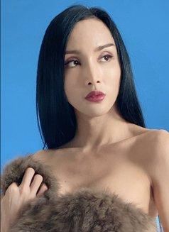 Reina - Transsexual escort in Tokyo Photo 6 of 16