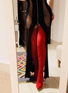 Reina-last week! - escort in Dubai Photo 28 of 30