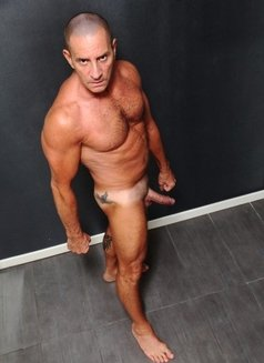male escort for gay escort a milan