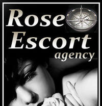 Rose Escort Agency - escort agency in Tel Aviv Photo 1 of 1
