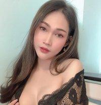 Roseesor - Transsexual escort in Chiang Rai