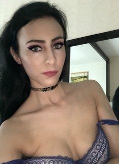 Roxanna Sweet and Passionate - escort in Dubai Photo 6 of 13
