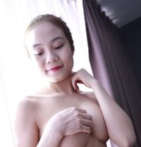 Sakura 19y Courtesan - escort in Dubai Photo 1 of 8