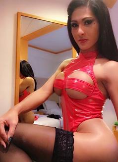 Mistreselegant Paradise found - Transsexual escort in Tokyo Photo 11 of 30
