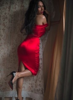 The top Sexiest Ladyboy Curve's - Transsexual escort in Makati City Photo 2 of 14