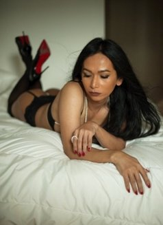 The top Sexiest Ladyboy Curve's - Transsexual escort in Hong Kong Photo 5 of 19
