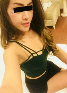 Sexy Avril - escort in Pattaya Photo 17 of 18