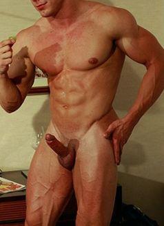 gay muscular independent escorts in hong kong