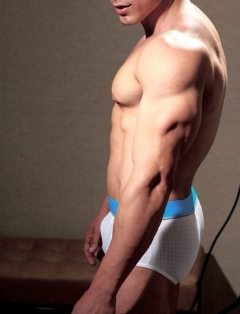 escorts web promediado gay