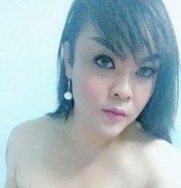 Shakira Sweety - Transsexual escort in Bangkok