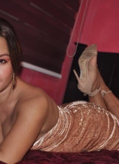 ShashaQueen Available for camShow - Transsexual escort in Manila Photo 6 of 22