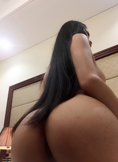 Shemale hot xxx69 - Transsexual escort in Berlin Photo 1 of 1